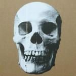 Skull op karton